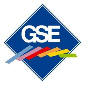 GSE 2010 (archiwum)